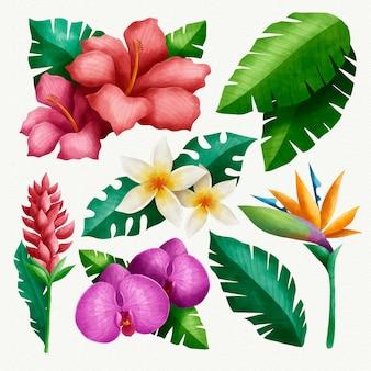 Coleção tropical de flores e folhas Vetor grátis