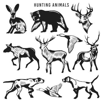 Coleção vintage de animais de caça