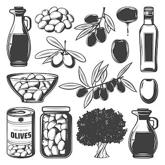 Coleção vintage de azeitonas naturais com galhos de árvores, lata de vidro e jarro