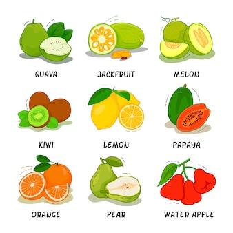 Colecção de frutas