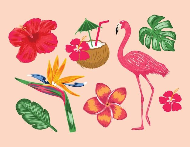 Colecções tropicais ilustração flamingo monstera coco flor planta cliparts em vetor