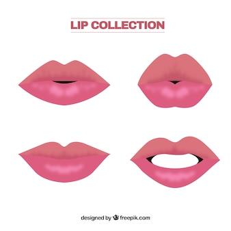 Colecionar lábio
