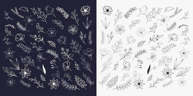 Coleções de elementos florais mão desenhada
