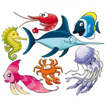 Coleta de animais marinhos