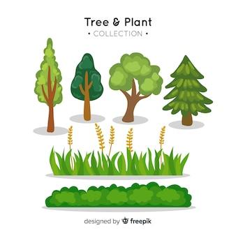 Coleta de árvores e plantas