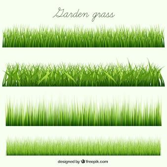 Coleta de grama do jardim