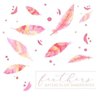 Coleta de penas pintados à mão