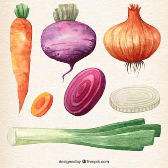 Coleta de vegetais aguarela