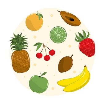 Coleta detalhada de frutas
