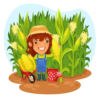 Colheita agricultor feminino em um milharal