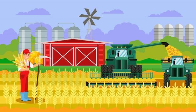 Colheita de trigo no campo ilustração plana