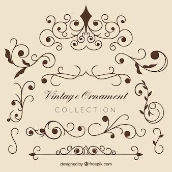 Collectio elegante ornamento vintage