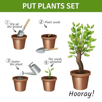 Colocar e crescer a instrução de plantas com conjunto de ícones realistas de água e sementes de potes