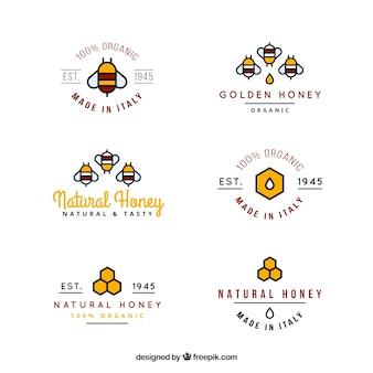 Coloridas logotipos mel orgânico em estilo linear