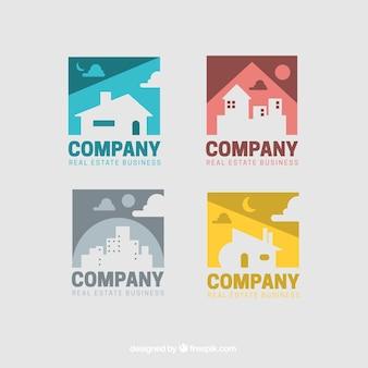 Colorido coleção logotipo verdadeiro estado