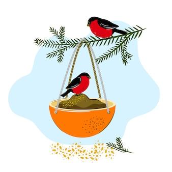 Comedouro para pássaros feito de casca de laranja. artesanato de inverno com as próprias mãos com as crianças.