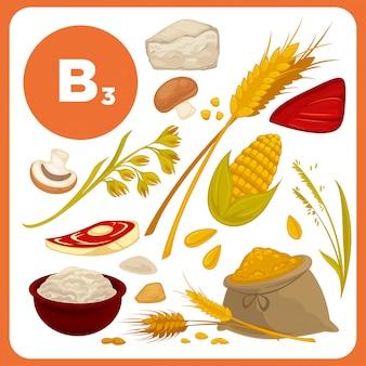 Comida de vetor com vitamina b3.