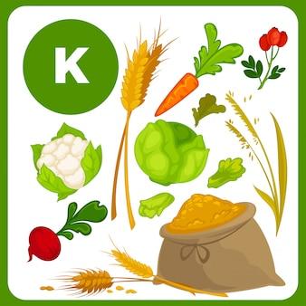 Comida de vetor com vitamina k.
