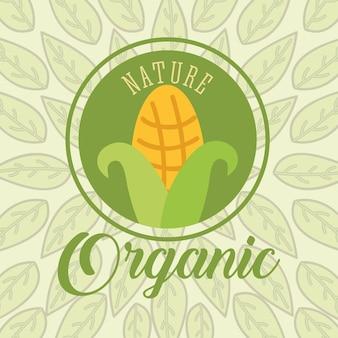 Comida orgânica natureza