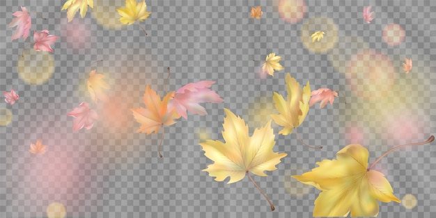 Composição abstrata com folhas de outono voadoras