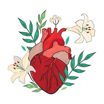 Composição com flores de lírio e coração isolado em um fundo branco. gráficos vetoriais.