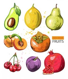 Composição com frutas em aquarela mão desenhada.