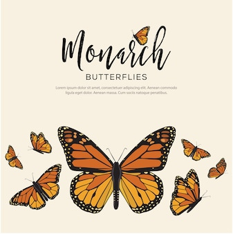 Composição de borboletas monarca
