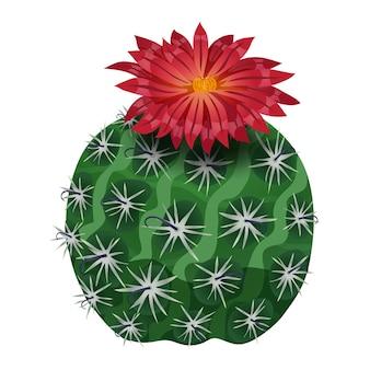 Composição de cacto com imagem isolada de flor de paródia em branco Vetor grátis