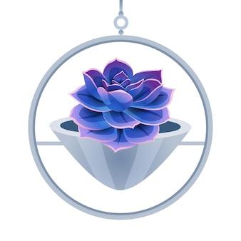 Composição de cacto com imagem isolada de nenúfar em vaso de flores em branco