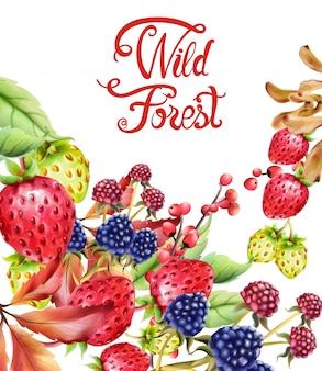 Composição de frutos da floresta selvagem