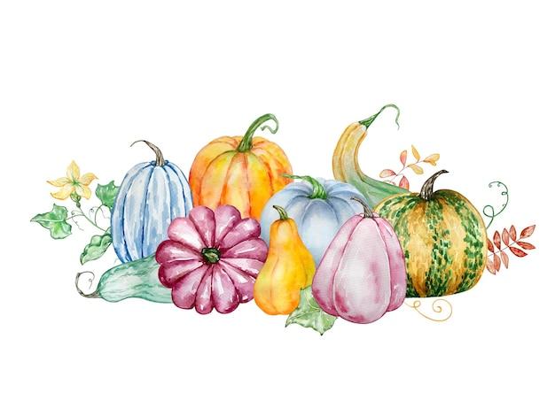 Composição de outono brilhante aquarela com abóboras coloridas, folhas e um galho com flores amarelas. ilustração para convites, tipografia, impressão e outros projetos.
