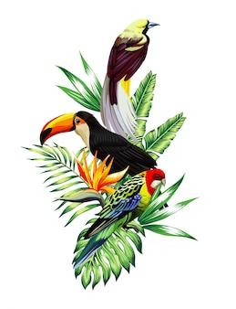 Composição de pássaros tropicais