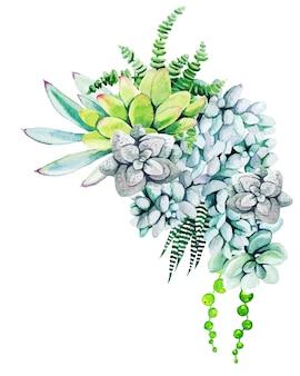 Composição de plantas e cactos em aquarela