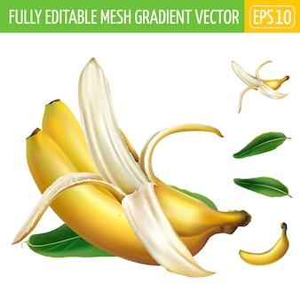 Composição de três bananas maduras com uma folha verde.