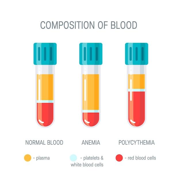 Composição do conceito de sangue. infográfico médico.