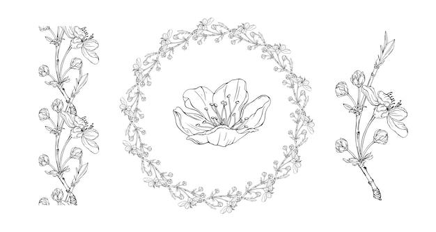 Composição floral com flores da primavera