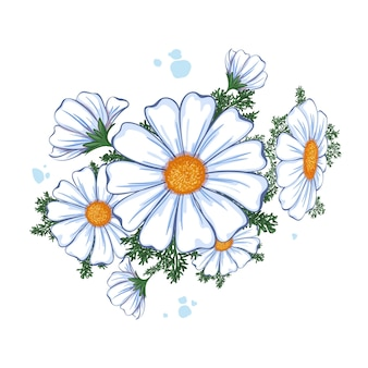 Composição floral de verão. buquê de margaridas brancas.