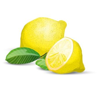 Composição fresca de limão