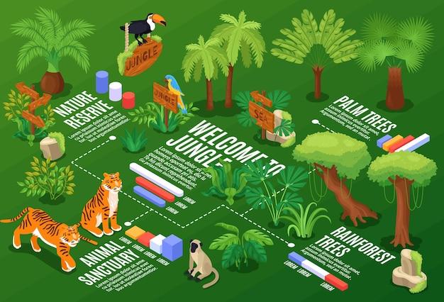 Composição horizontal isométrica da selva com gráficos de fluxograma e legendas de texto com plantas exóticas e animais selvagens