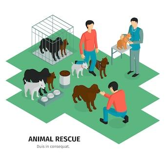 Composição isométrica de caridade com caracteres humanos de guardiões de pessoas e animais domésticos animais com ilustração vetorial de texto editável