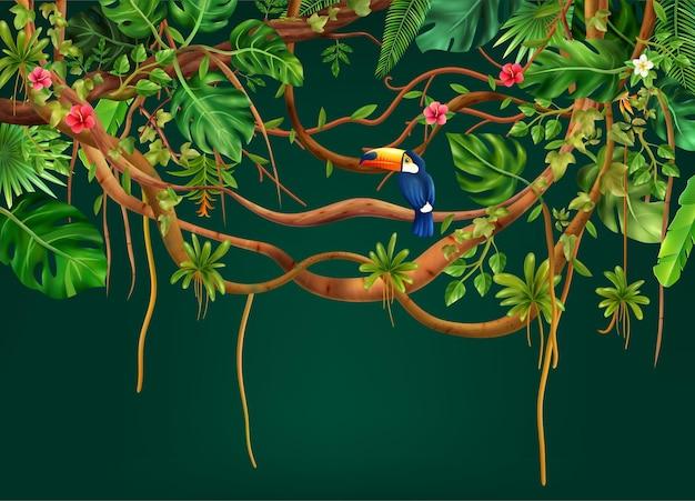 Composição realista da selva de cipós com galhos de árvores exóticas com folhas, flores e pássaros