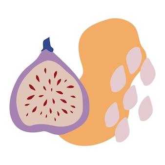Composição vetorial com figos e abstração. fruta bonita para impressão de t-shirt, cartaz, logotipo, cartões postais, etiqueta ou cartão. ilustração em vetor editável