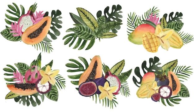 Composições de aquarela com frutas tropicais e folhas