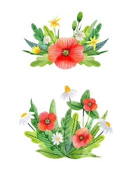 Composições de flores em aquarela com flores amarelas, papoulas de camomila, trevos e folhas