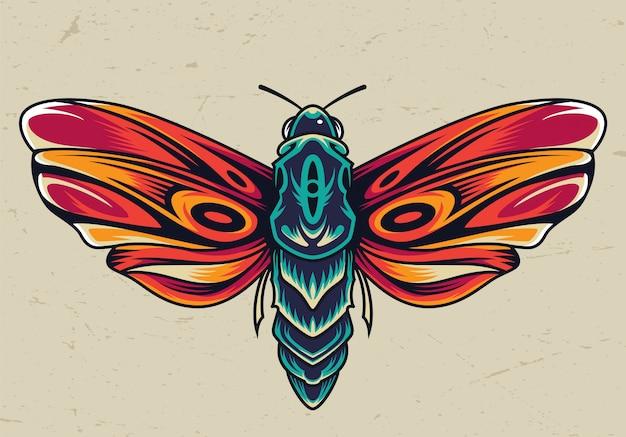 Conceito de borboleta linda colorida