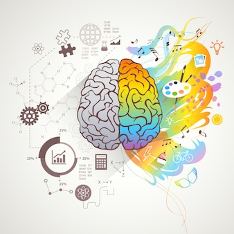 Conceito de Cérebro Direito Esquerdo