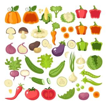 Conceito de coleção conjunto de ícones de fatia de comida de vegetais. ilustração dos desenhos animados