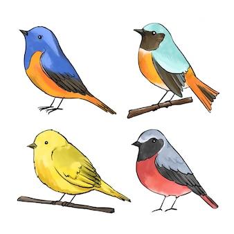 Conceito de coleção de pássaros em aquarela