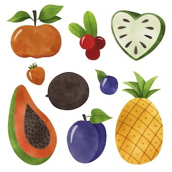 Conceito de coleta de frutas