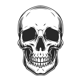 Conceito de crânio humano vintage